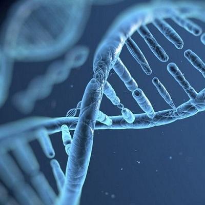 Связь гипертонии с генетикой