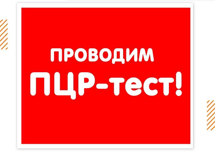 МЫ ПРОВОДИМ ПЦР-ТЕСТ!